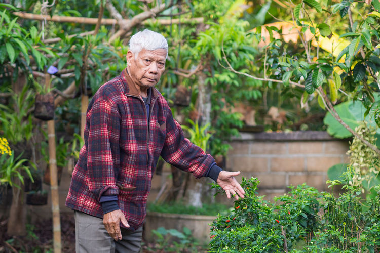 Portrait of a senior man smiling and looking up while standing in a garden