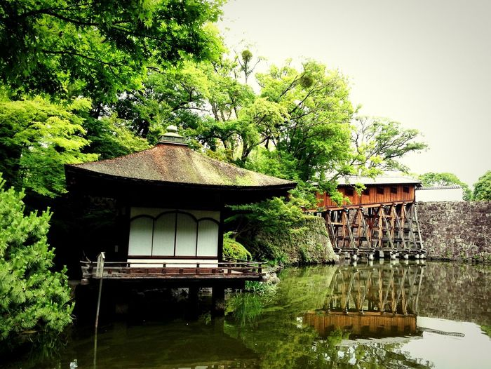 斜めにかかる廊下橋とお茶室 Corridor-bridge Tea-ceremony Reflection Light And Shadow Beautiful View Garden Wakayama 和歌山