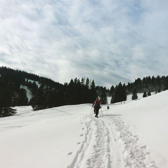 Bergmomente2016 Bergwelten Skitouring Spuren Im Schnee Powderdays PerfectDays