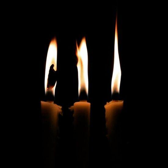 蝋燭 灯 Candle Fire