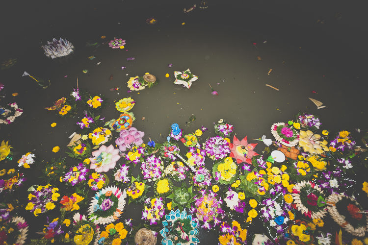 the result after loi khatong Art And Craft Beautiful Trash Beauty In Nature Colorful Creativity Decoration Festival Festival Season Floating On Water Flower Full Frame Large Group Of Objects Loi Khathong Multi Colored Nature No People Thailand Trash Variation Vibrant Color Water