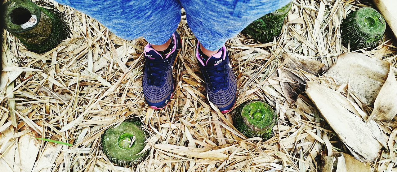 Take a walk in my shoes for a day. From Where I Stand My Two Feet Cut Bamboo Trees . Out Of The Box