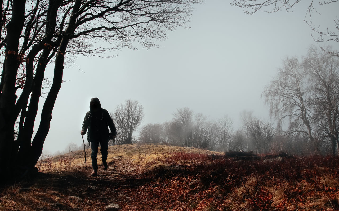 tree, bare tree, walking, real people, one person, full length, fog, rear view, winter, nature, standing, cold temperature, branch, leisure activity, beauty in nature, lifestyles, outdoors, landscape, day, women, men, warm clothing, sky, adult, people