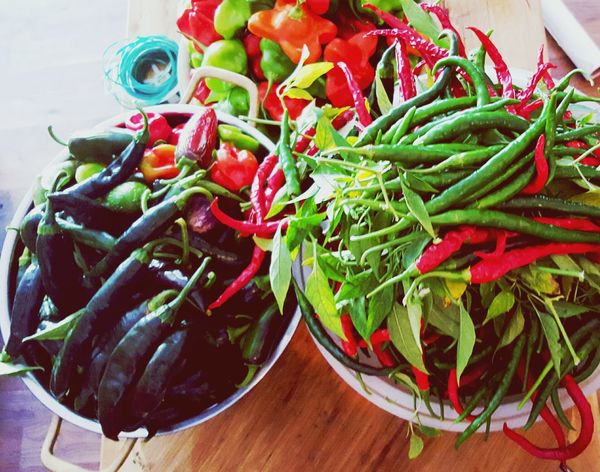 Peppers Hotpeppers Thaichilies Thaichilipeppers Gardening Harvest Chili Pepper Redhotchilipeppers Hotchili