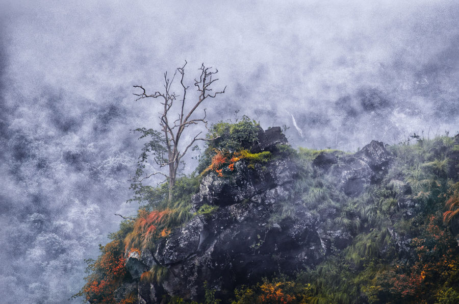 Re-edited Nature Dramatic Lighting Early Morning Naturelovers Fog Dynamic Uplift Light And Shadow Landscape Great Outdoors With Adobe Perspectives On Nature