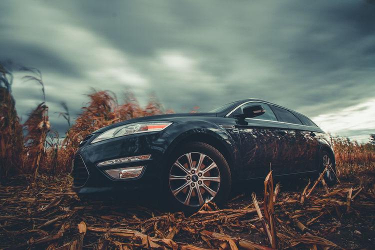my car in focus