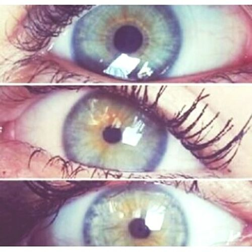 Green Eyes Friends Eyes
