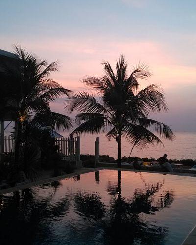 Smartphone Xiaomi Mi2, Sunset Indonesia Reflection Water Palm Tree Sunset Sky Outdoors Silhouette Landscape Tree Sea Nature Night No People Xiaomi Mi2