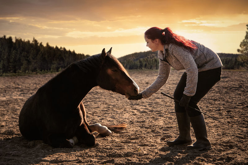 Full length of woman touching horse on field against sky