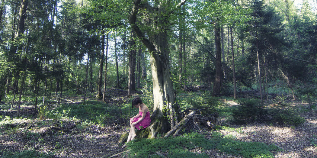 Woman amidst trees in forest