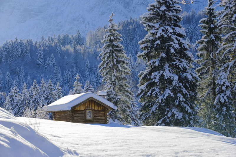 winter landscape in Bavaria with powder snow at mountains Bavaria Bavarian Landscape Landscape Land Mountain Mountain Range Alps Winter Snow Scenics Scenics - Nature Beauty In Nature No People Copy Space Tranquility Tranquil Scene Idyllic Idyllic Scenery Nature Nature_collection Powder Snow Outdoors Rural Scene Rural Hut