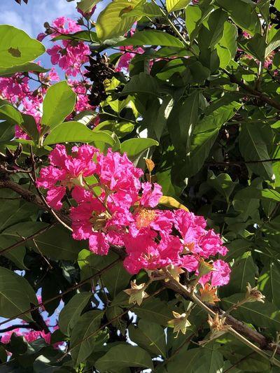 Springtime 3😍!