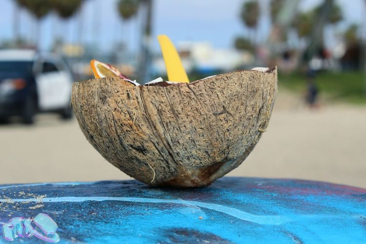 First Eyeem Photo California TeamCanon Palm Springs CA Palm Springs ArtWork Water Food Nature Outdoors Freshness Close-up Focus On ForegroundA143photography Palm Springs CA. Venice Beach Cocunut A Day No People