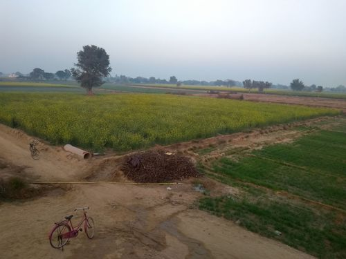 Bicycle Agriculture Rural Scene Field Crop  Tree Growth Landscape Outdoors Nature Day No People Sky Irrigation Equipment Freshness