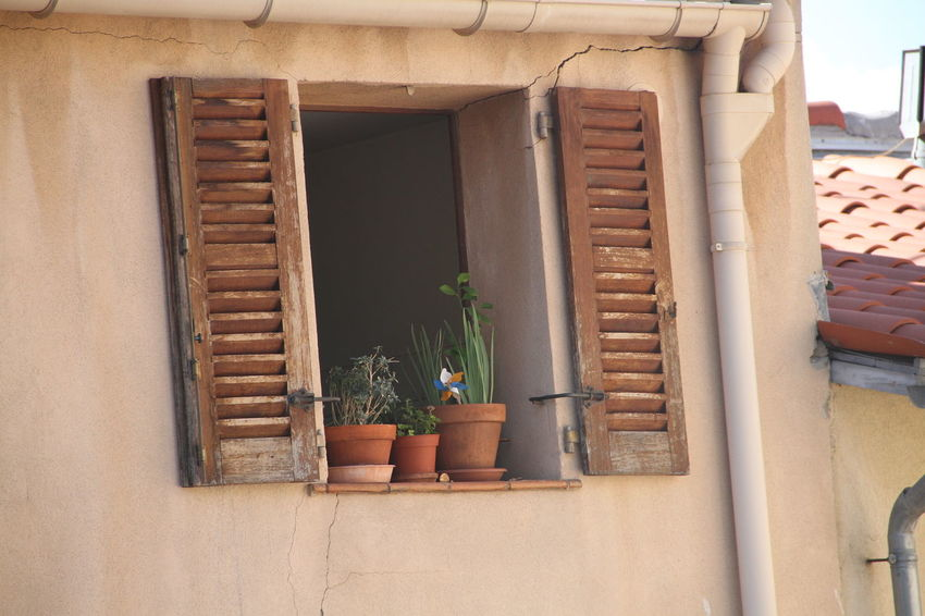 Window with flower pot Brick Wall Door Flap Flower Pot Front Or Back Yard House Leaf Plant Potted Plant Wall Wall - Building Feature Window Window Sill