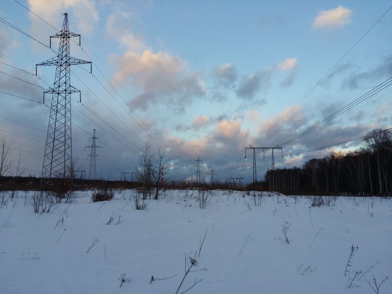 cable, winter, cold temperature, snow, electricity pylon, electricity, connection, power line, weather, sky, nature, cloud - sky, power supply, technology, outdoors, day, field, fuel and power generation, tranquility, tranquil scene, no people, landscape, beauty in nature, scenics, low angle view, tree