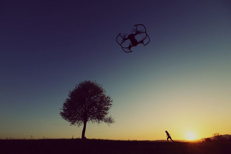 tree drone and