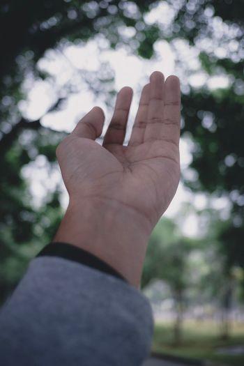 [3] 📷 Hand