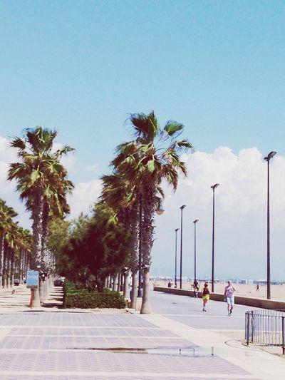 Traveling Beach