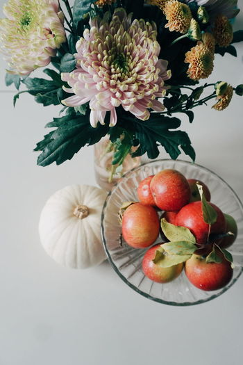 fall inspiration Fall Fall Beauty Fall Colors Autumn Autumn colors Pumpkin Apples Flower Chrysanthemum Top View Copy Space Flower Fruit Flower Head Close-up Food And Drink Ripe Juicy Vitamin C Autumn Mood