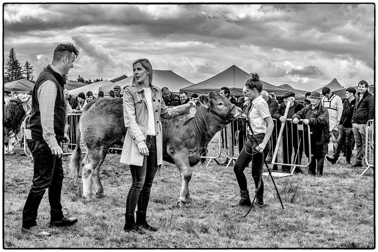 An agricultural show in Swinford, Ireland Agriculture Farm Life Ireland Blackandwhite Domestic Animals Livestock Mammal Real People