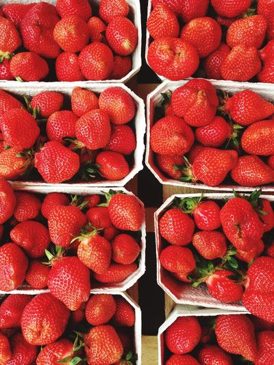 Directly above shot of strawberries in container