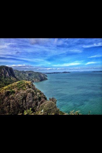 Overlooking the Tasman sea atop the rainforest covered coast.