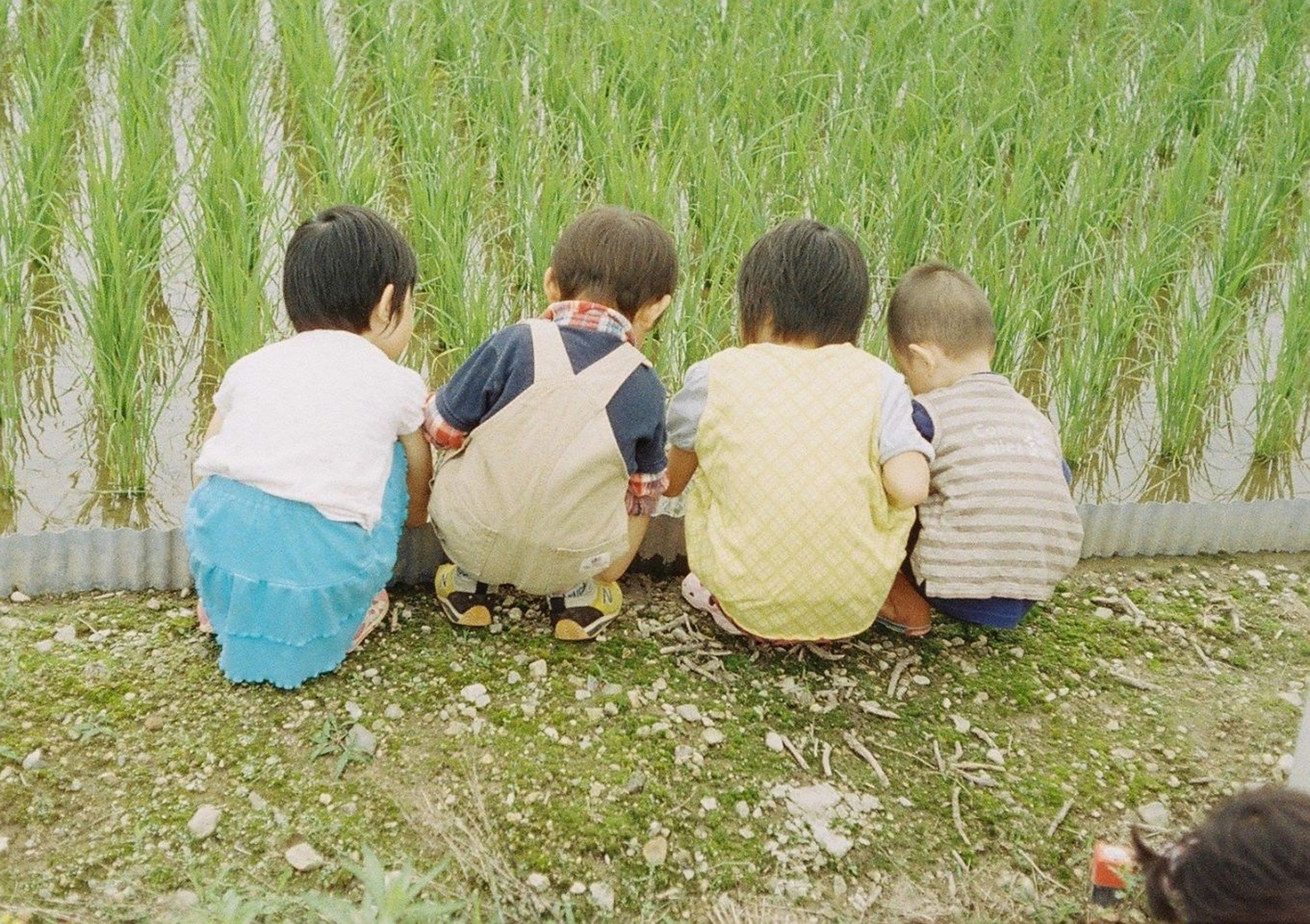 togetherness, bonding, lifestyles, leisure activity, love, men, rear view, grass, friendship, family, person, casual clothing, sitting, boys, field, childhood, family with one child