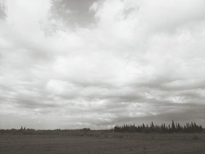 Núvols d'agost