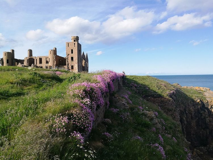 Beautiful Scotland Cliffs Flowers Castle Nature Cloud Tranquility Ruins Old Ruins Architecture Heritage Flower Old Ruin History Fort Water Sky Architecture Building Exterior Historic Calm Tranquil Scene Idyllic The Great Outdoors - 2018 EyeEm Awards