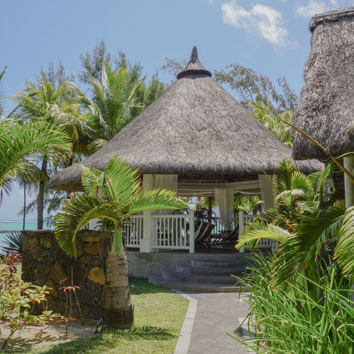 Place for relax #bellemarebeach #bellemareplage #mauritius #ambrehotel Palm Frond Palm Leaf Palm Tree Thatched Roof Stilt House Resort Gazebo Coconut Palm Tree