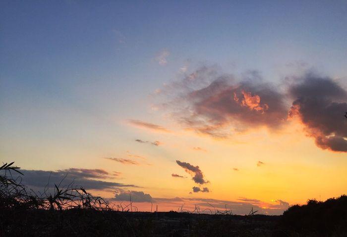 いつかの空 Nature 夕焼け Hello World Taking Photos Eye Em Nature Lover EyeEm Best Shots Sunset_collection