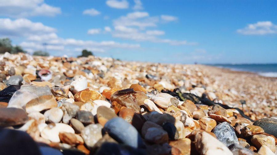 Bug EyeEm Selects Pebble Beach Sea Beach Pebble Water Close-up Sky Horizon Over Water
