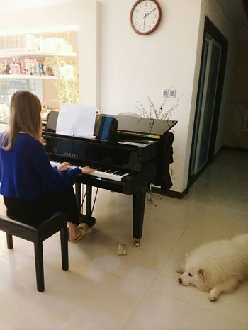 Maoming China Photo♡ Piano Time Me First Eyeem Photo Dog Is So Cute C: