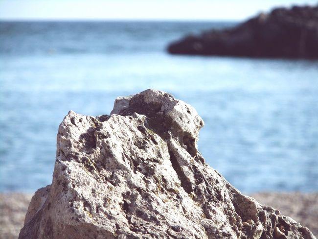 Lifestyle Beachphotography Beach Fujifilm Rome Summertime Porto Mare Sea Stones