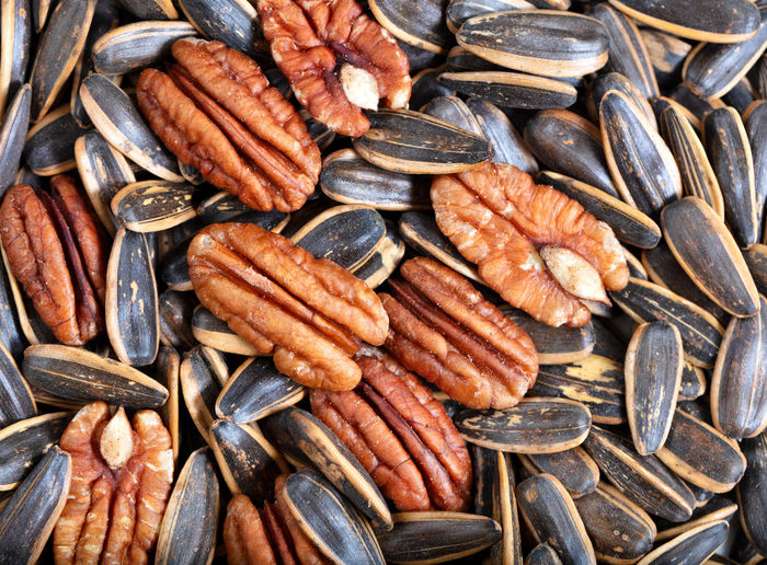 Pecan nuts and sunflower seeds in filled frame format Agriculture Pecan Backgrounds Close-up Food Food And Drink Freshness Full Frame Health Healthy Eating Oil Pecan Nuts Protein Snack Still Life Studio Shot Sunflower Seeds