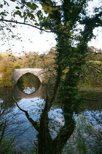 Reflection Beautiful Day Nature Walk Aberdeen Bridge Of Don