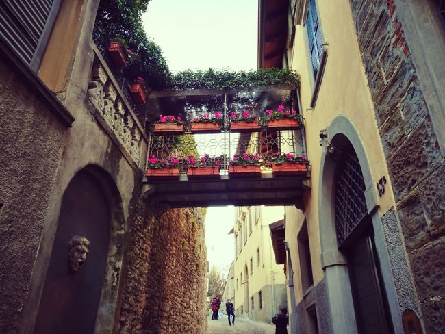 Bergamo, Italia Built Structure Architecture Building Exterior Low Angle View Outdoors Day Sky No People