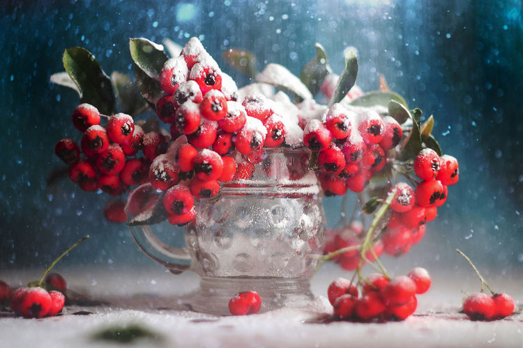 Close-up of snow covered rowan berries in glass on table