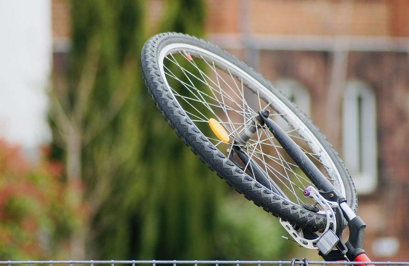 Close-up of caterpillar on bicycle
