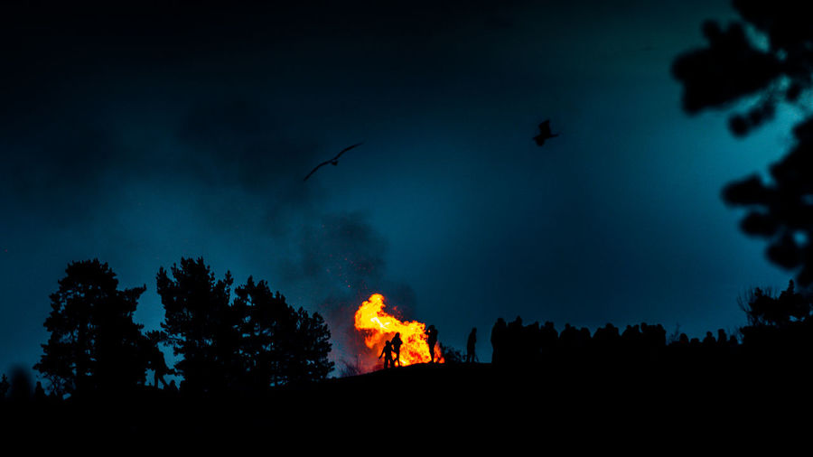 Low angle view of bonfire by silhouette trees against sky at night