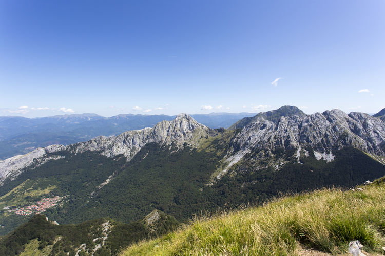 View from Monte