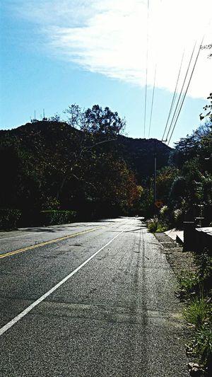 Bicycling in Pasadena