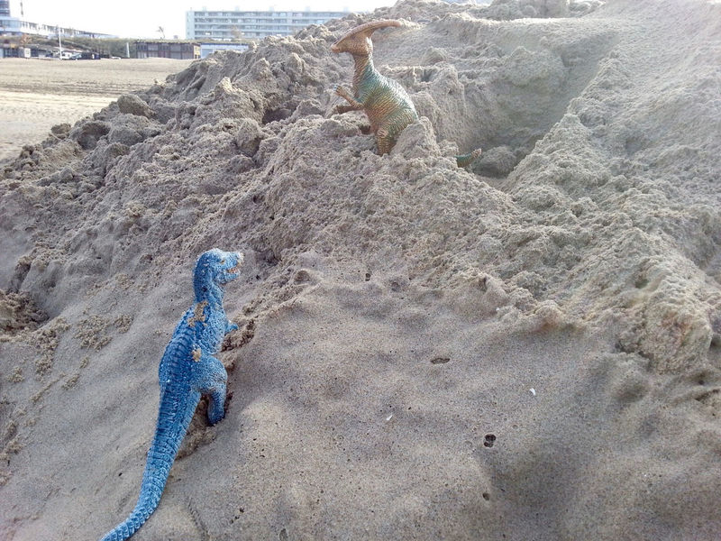 More about the famous Dino Adventure at the Zandvoort beach: Dinos looking for their home. Beach Curious Day Daydreaming Dino Dinosaur Dinosaurs Outdoors Sand Sand & Sea Sand Dune Story Storytelling Strand Summer Sunset Toys Tyrannosaurus Water Dinosaurier  Sandy Beach Sea Scenics Toy Toystory