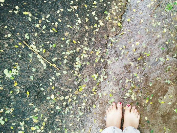 step on the ground with ur feet bare, feel the kind touch of earth... Clickonarainyday📸