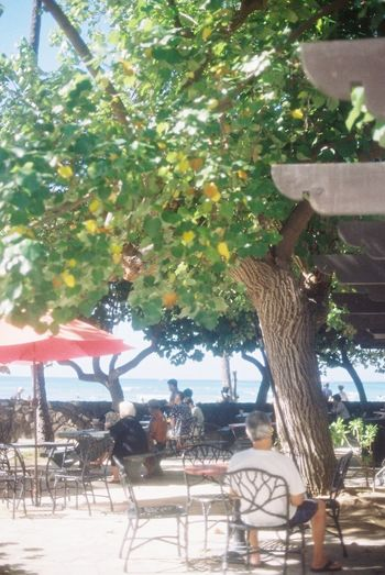 35mm Film Film EyeEm Best Shots Hawaii Holiday Sunny Day Sea Slow Life