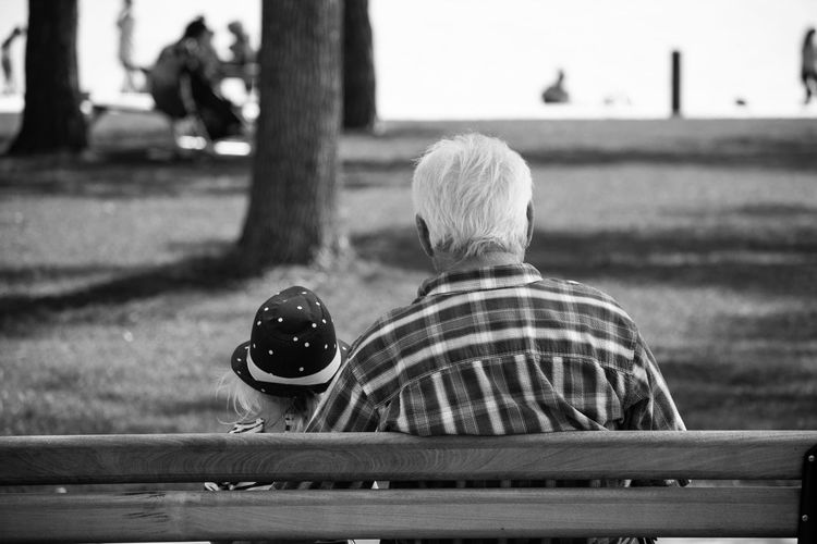 Rear View Of Girl With Grandfather Sitting On Bench At Park
