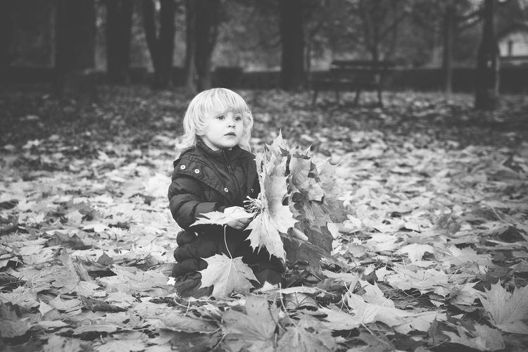 Girl Playing With Autumn Leaves