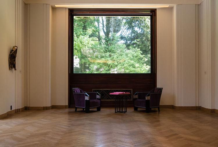 Trees seen through home window