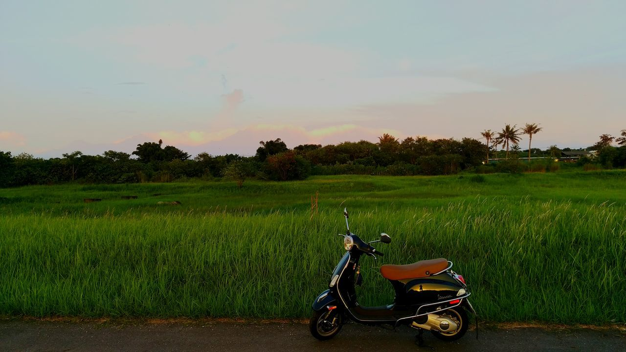 transportation, field, mode of transport, tree, sunset, land vehicle, growth, landscape, outdoors, nature, sky, green color, rural scene, grass, rice paddy, beauty in nature, plant, day, scenics, no people